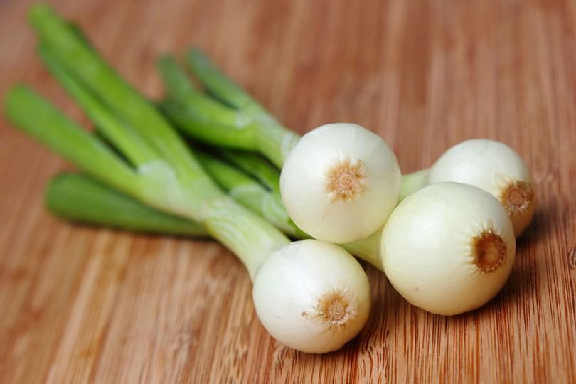 Cómo plantar cebolleta