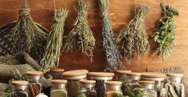 Cómo guardar hierbas aromáticas