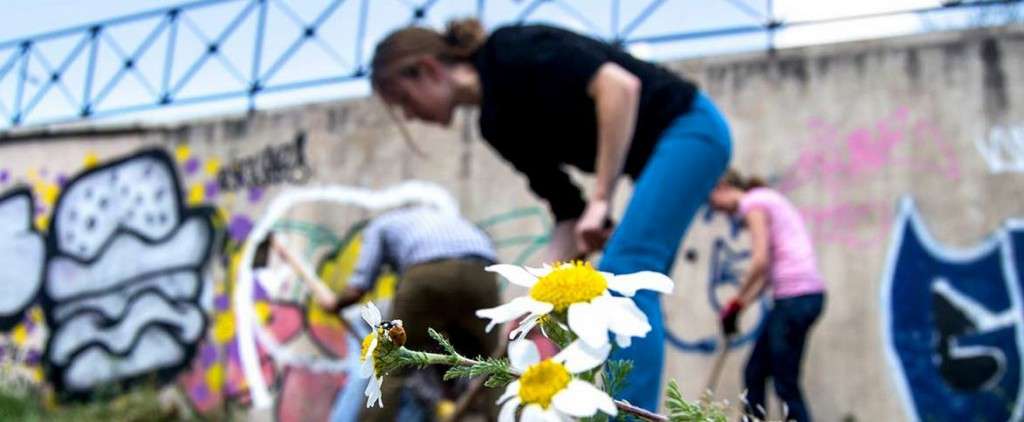 Huerto la Sanchita, iniciativa vecinal en Madrid
