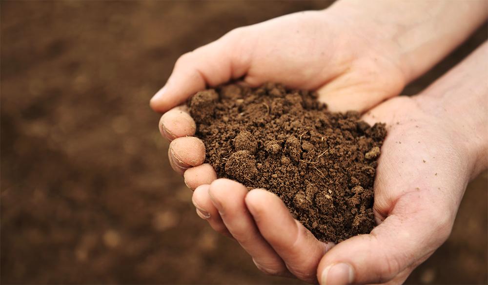 Cómo saber qué tipo de suelo tenemos