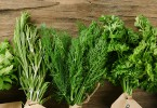 cómo recolectar plantas aromáticas