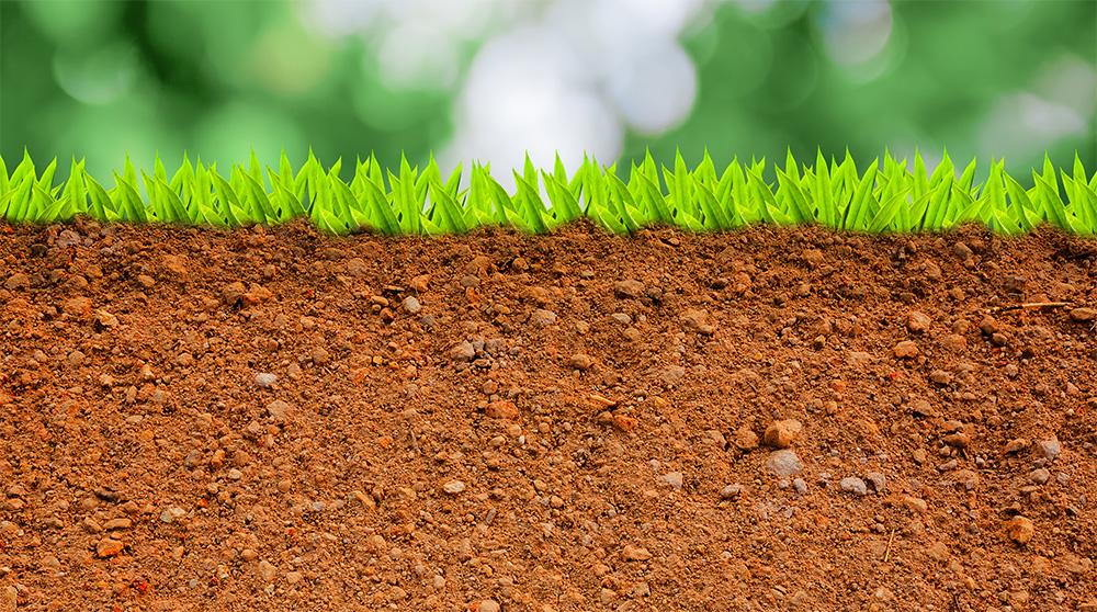 Tipos de suelo el huerto urbano - Tipos de suelo para casa ...