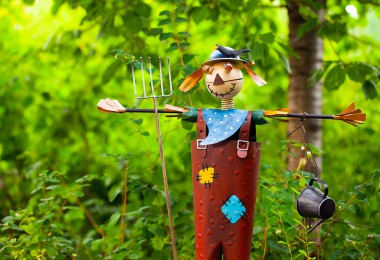 Cómo proteger los frutales del huerto