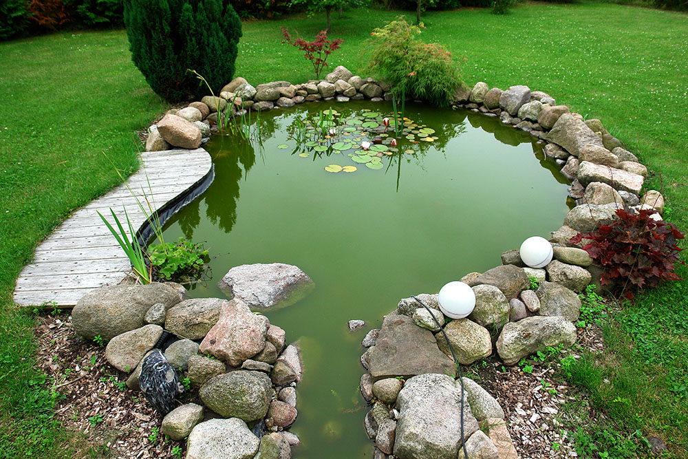Debemos apilar piedras y ramas a la orilla del estanque