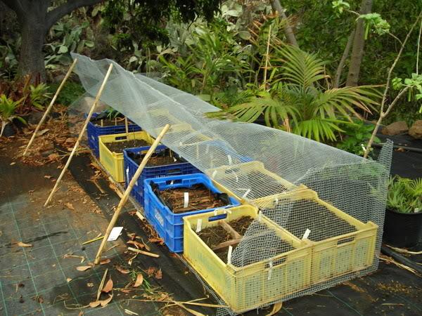 Las jaulas son de tela o malla metálica y puede ponerse o quitarse con facilidad.